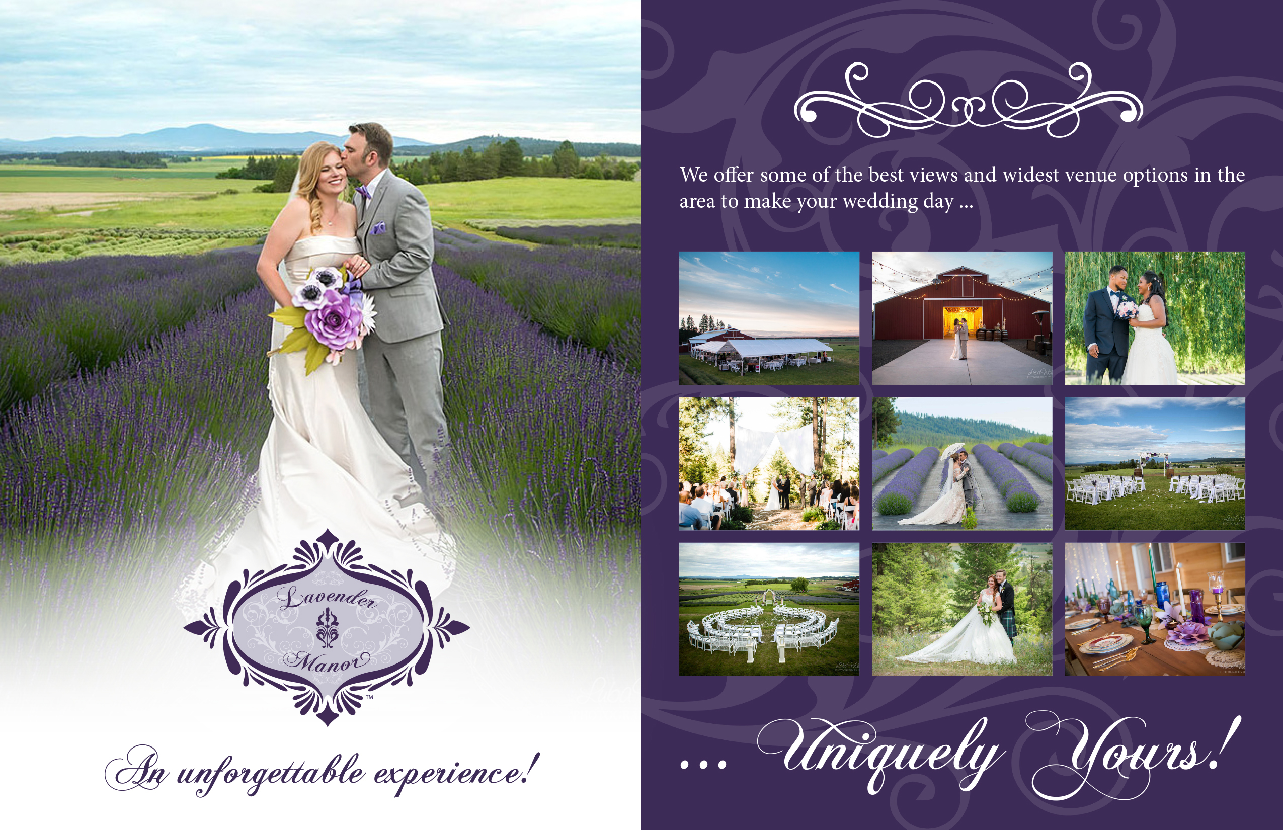 "<a href=""/vendors/wedding-lodging-facilities?id=""/>http://theweddingresourceguide.net/index.php?option=com_content&view=article&id=339</div></div></div></a>"